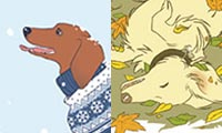 Dachshund Seasons - Autumn and Winter